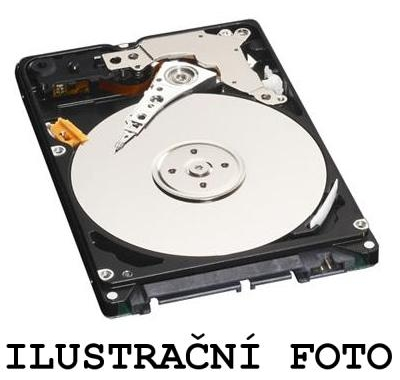 Pevný disk (harddisk) HDD 500 GB pro notebook PACKARD BELL EasyNote MV45 SABLE G